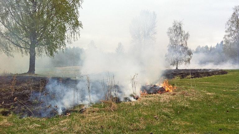 En gräsbrand i Råda.