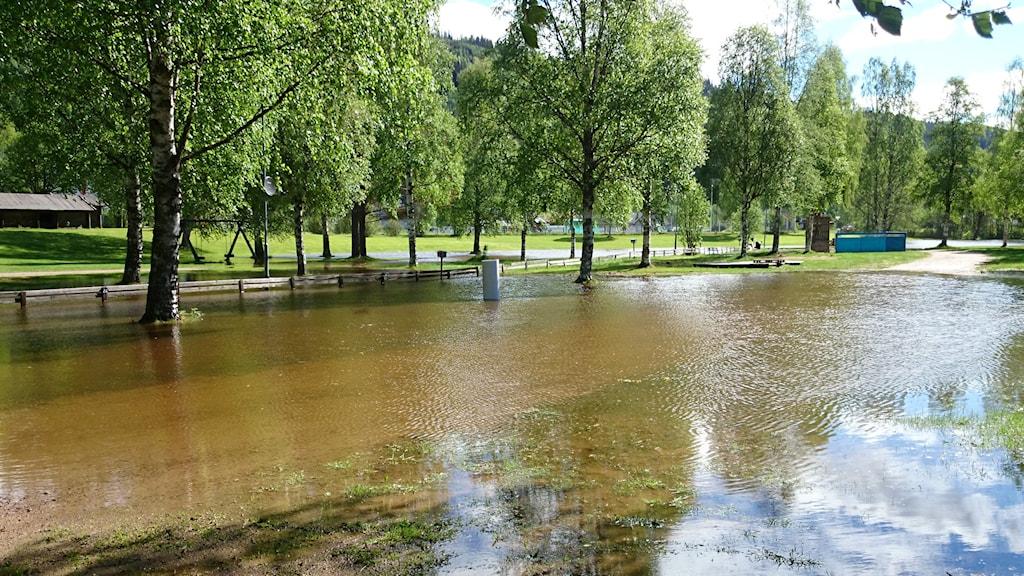 Fiskecampingen i Sysslebäck. Foto: Lennart Nordenstein/Sveriges Radio.