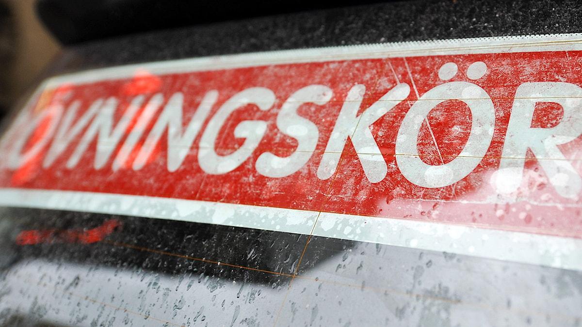 Övningskörningsskylt på en trafikskolebil. Foto: Bertil Ericson/TT.