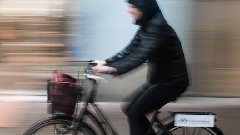 Cyklist i regnet. Foto: Isak Olsson/Sveriges Radio