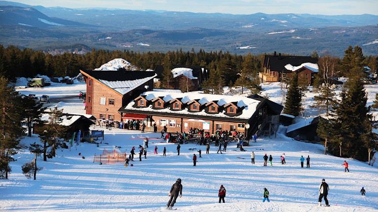 Hovfjällets skidanläggning. Foto: Lars-Gunnar Olsson/Sveriges Radio.