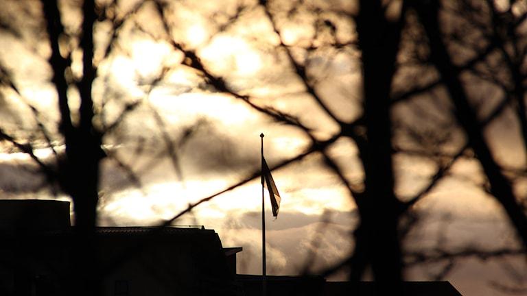 Sol på himlen. Foto: Lars-Gunnar Olsson/Sveriges Radio.
