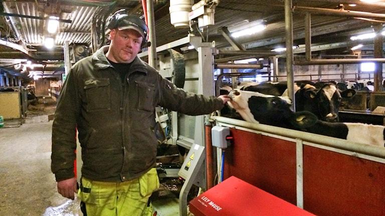 Mjölkbonden Robert Aronius. Foto: Annika Ström/Sveriges Radio.