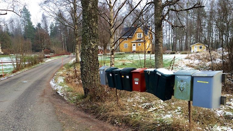 Postlådor på landet. Foto: Annika Ström/Sveriges Radio.