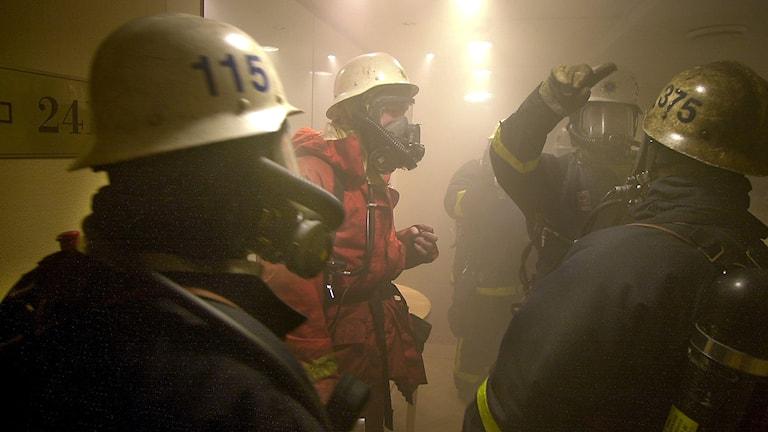 Rökdykare arbetar. Foto: Björn Larsson Ask/TT.