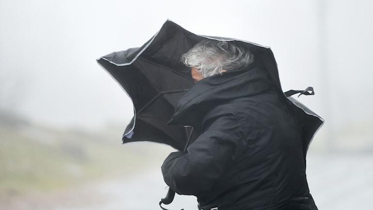 Dam med paraply som slits i vinden.