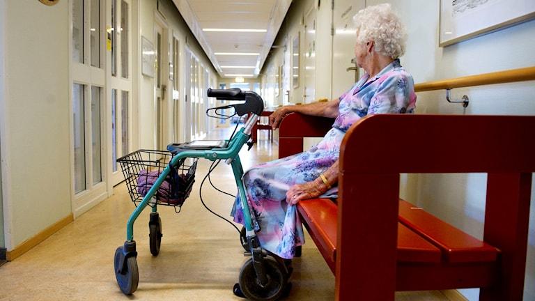 En äldre kvinna med rollator sitter på en bänk i en korridor på Brommagårdens vård- och omsorgsboende i Bromma. Foto: Jessica Gow/TT