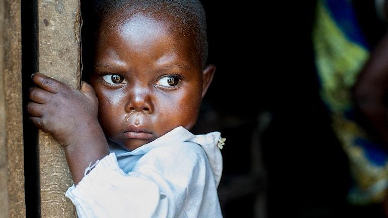 Barn i Kongo. Foto: Anettte Brolenius
