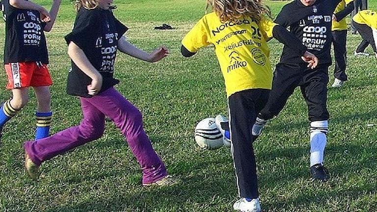 Barn som spelar fotboll. Foto: Lars-Gunnar Olsson/Sveriges Radio