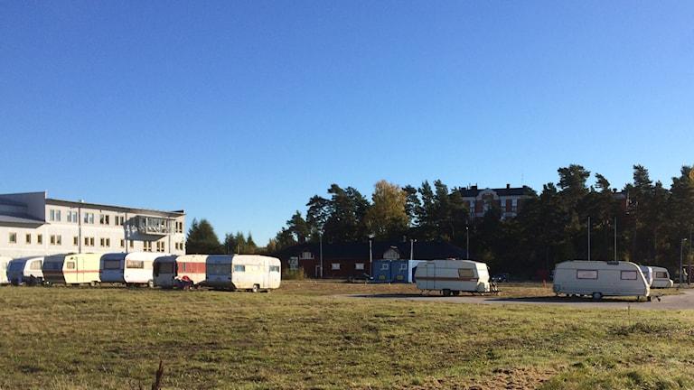 Uppställda husvagnar. Foto: Per Larsson/Sveriges Radio