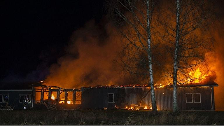 В этом горящем складе предполагалось поселить беженцев. Фото: David Hårseth / Dagsmedia.se