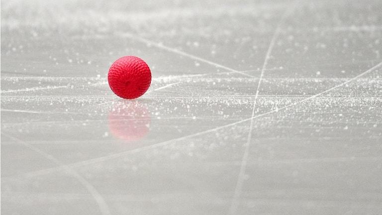 Bandyboll.  Foto: Anders Wiklund/TT.