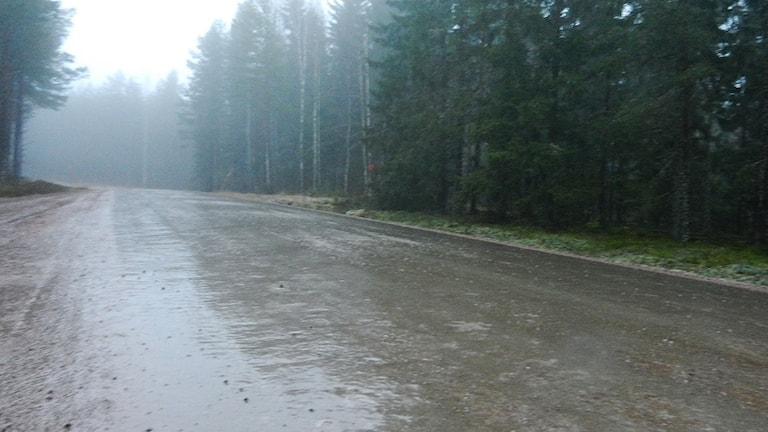 Grusväg med istäcke. Foto: Roy Malmborg/Sveriges Radio.
