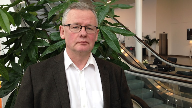 Per Inge Lidén (MP), Foto: Robert Ojala/Sveriges Radio.