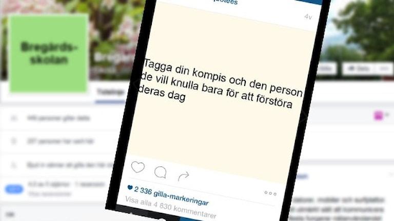 Skärdumpar av Instagraminlägg och en facebooksida.