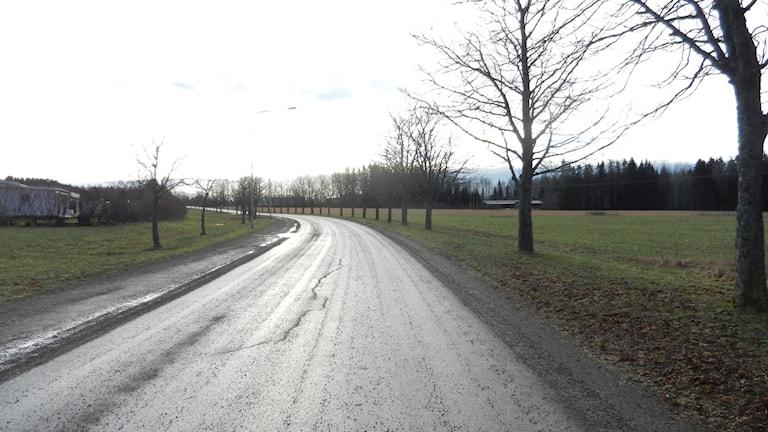 Runnevåls bostadsområde i Kil ska få ett nytt industriområde som granne. Foto: Roy Malmborg/Sveriges Radio.