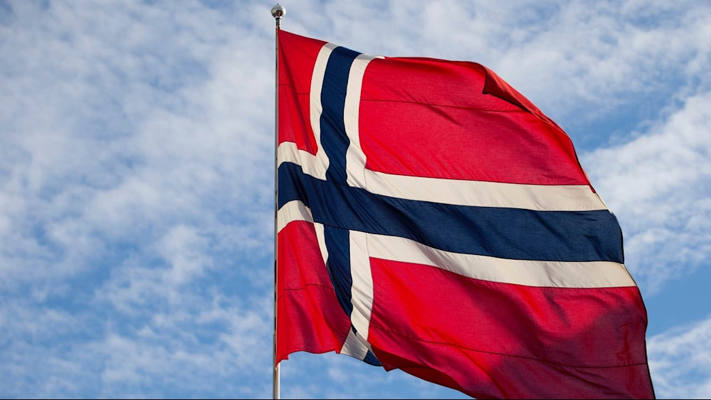 Norges flagga. Foto: Håkon Mosvold Larsen/TT