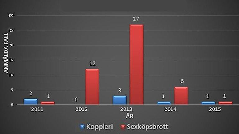 Grafik som visar antalet anmälda fall av koppleri och sexköpsbrott. Grafik: Sveriges Radio.
