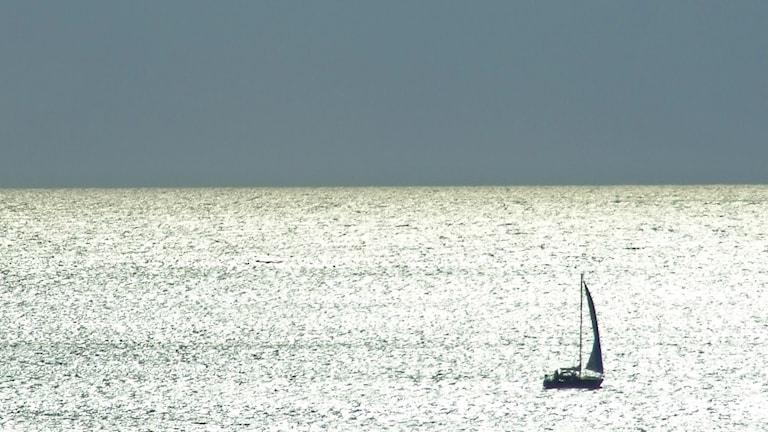 En segelbåt på öppet vatten. Foto: Lars-Gunnar Olsson/Sveriges Radio.