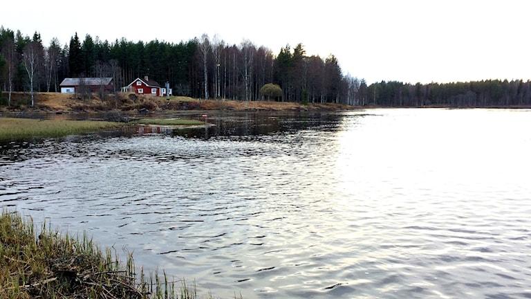 En sjö.