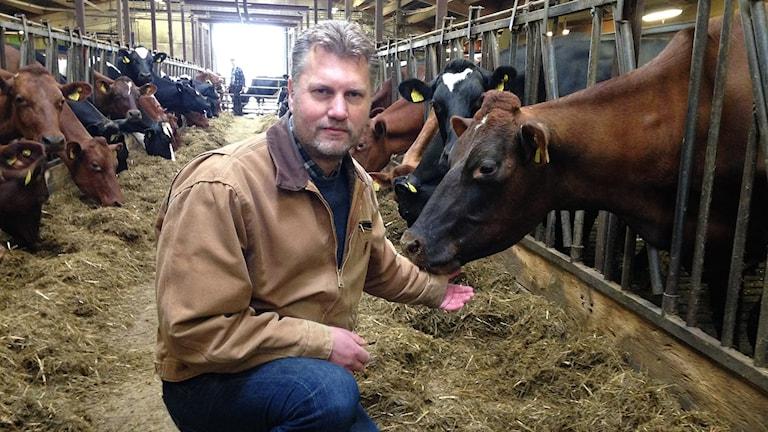 Jörgen Blakstad, mjölkbonde. Foto: Sveriges Radio.