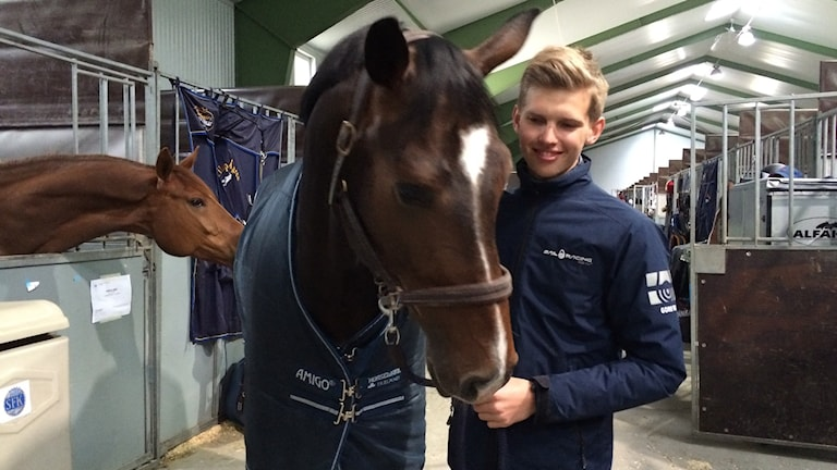 filip ågren står med häst i stall