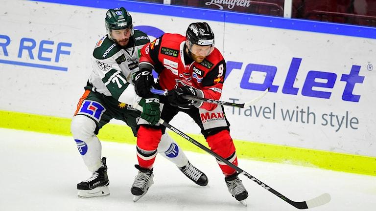 Hockeymatch. Foto: Björn Lindgren/TT.