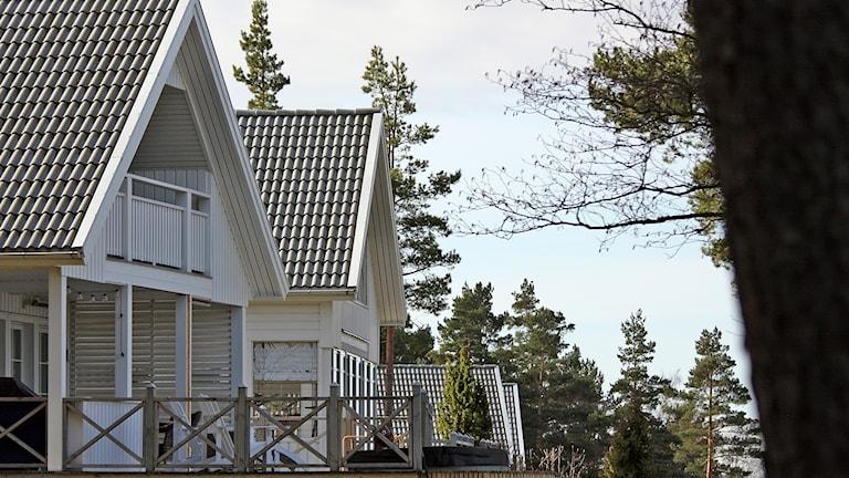 Fuktskadade hus på Zakrisdalsudden. Foto: Örjan Bengtzing/Sveriges Radio.