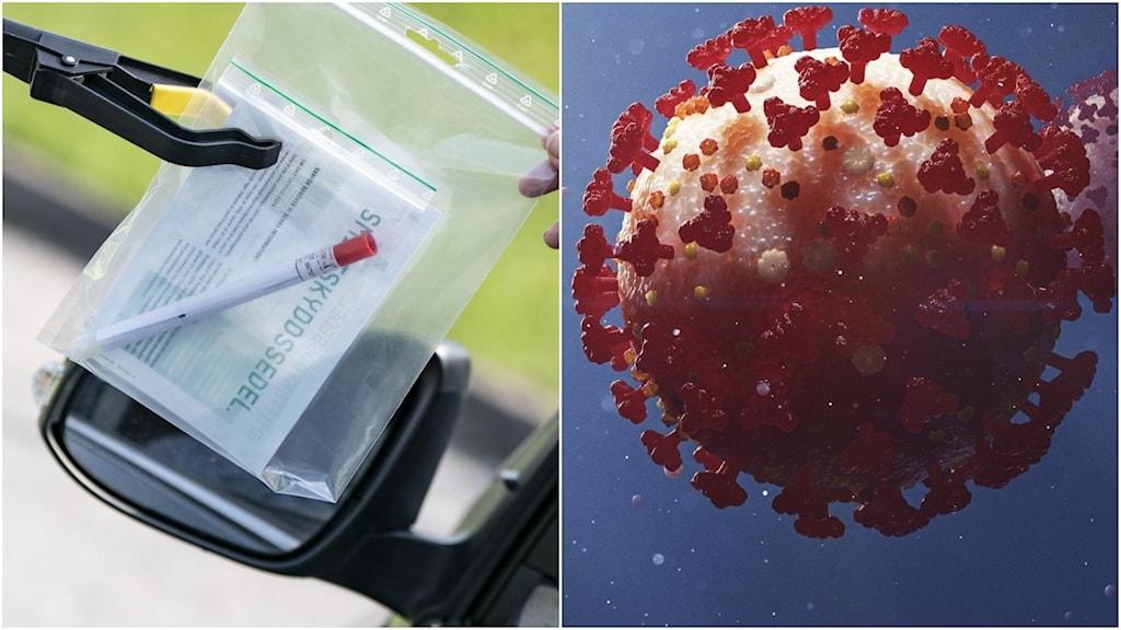 Coronatest och coronavirus.