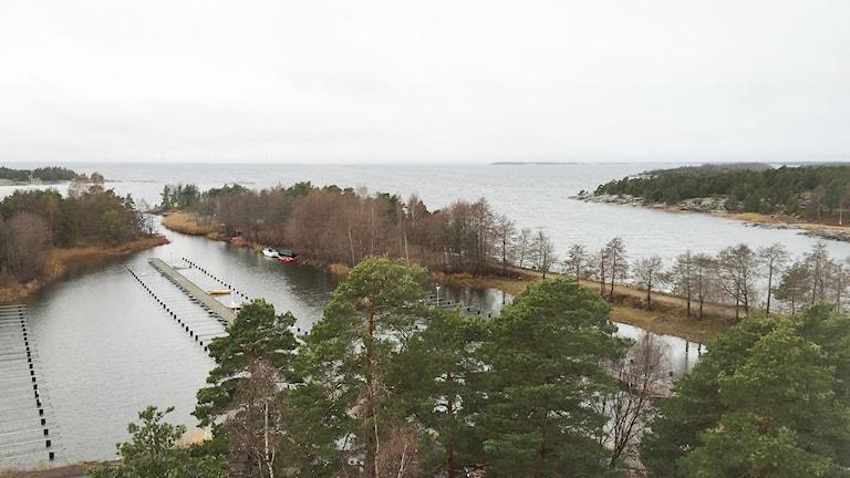 Utsikt mot Vänern. Foto: Robert Ojala/Sveriges Radio.
