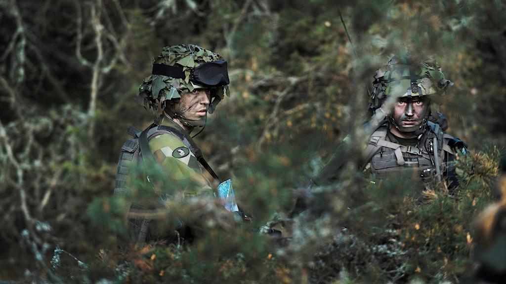 Svensk militär under en övning. Foto: Foto: Yvonne Åsell/SvD/TT.