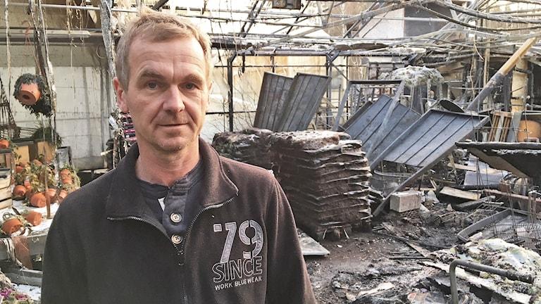 Tord Andersson, handelsträdgården i Säffle. Foto: Jenny Tibblin/Sveriges Radio.