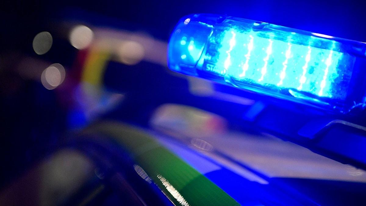 Blåljus från polisbil. Foto: Johan Nilsson/TT arkiv.