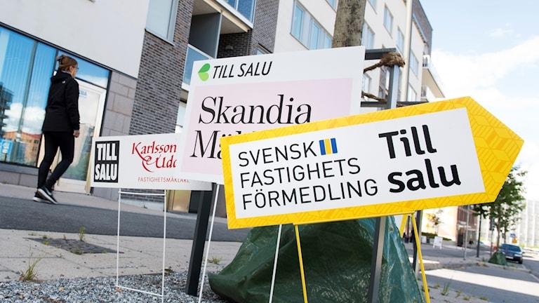 Mäklarskyltar. Foto: Fredrik Sandberg/TT.