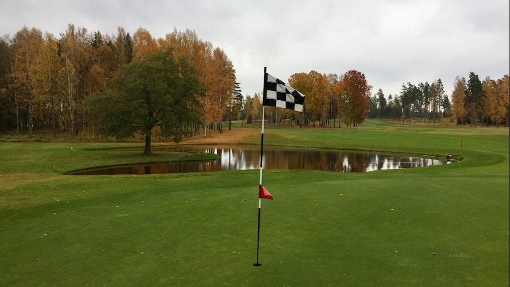 Hammarö golfklubb.