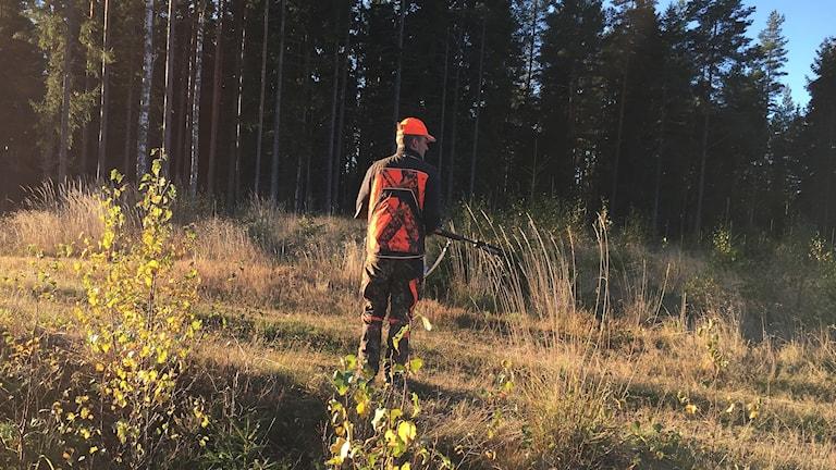 En jägare som håller i en bössa. Foto: Sara Johansson/Sveriges Radio.
