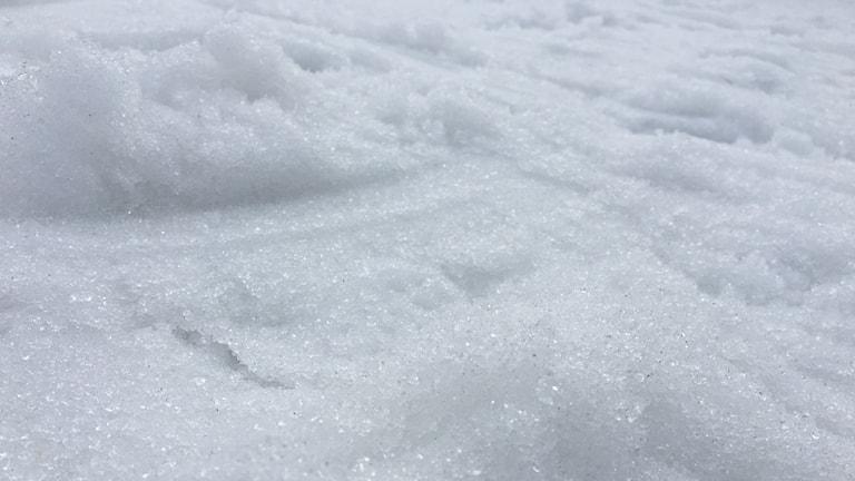 En bild på snö