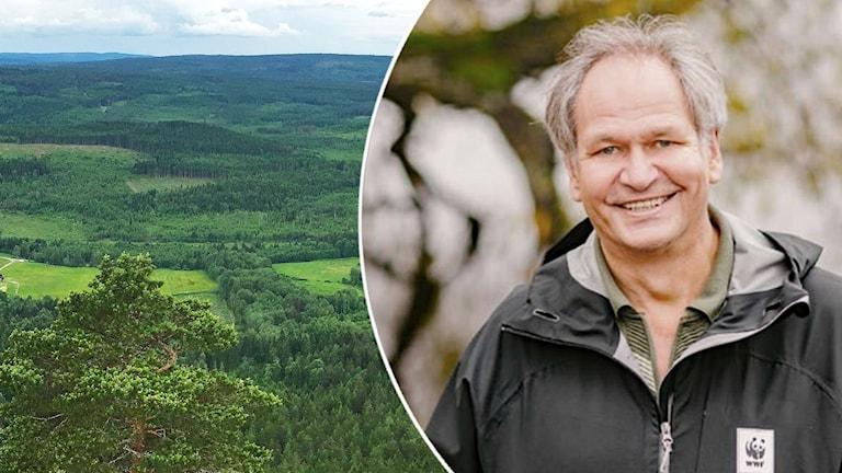 Peter Westman. Foto: Lars-Gunnar Olsson/Sveriges Radio och Världsnaturfonden.