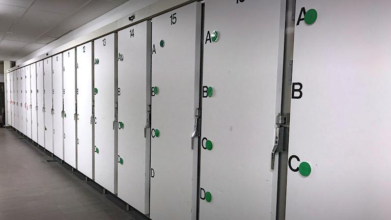 Ett bårhus på ett sjukhus. Foto: Malin Björk/Sveriges Radio.