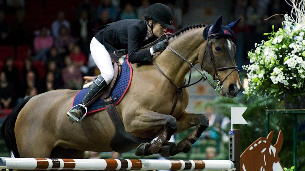 häst hoppar hinder