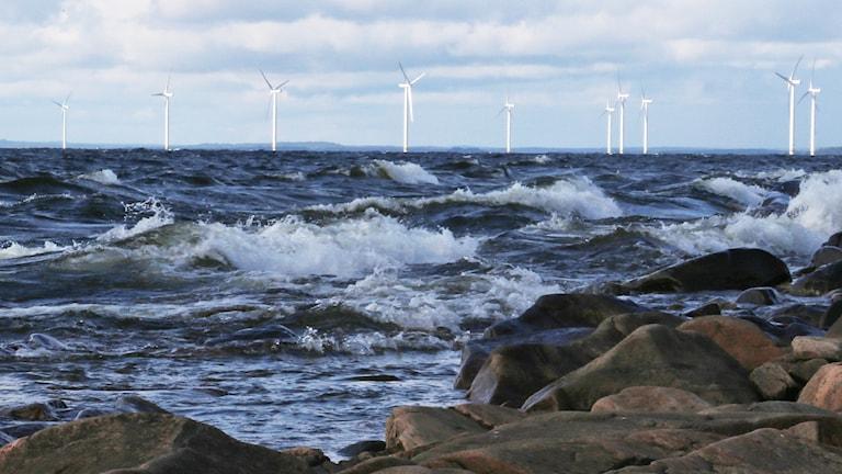 Vindkraftverk i Vänern. Foto: Lars-Gunnar Olsson/Sveriges Radio.
