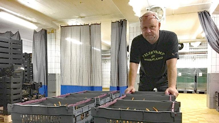 Ola Hultman, Wermlands skogsförråd. Foto: Gustav Jacobson/Sveriges Radio