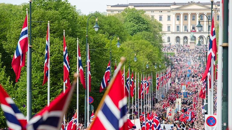 17:e maj-firandet på Karl Johan. Foto: Audun Braastad/TT.
