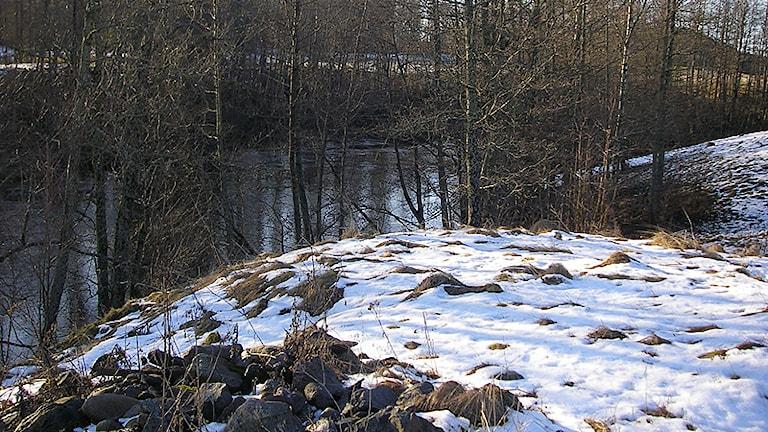 Kolsäter, Foto: Roy Malmborg, SR värmland