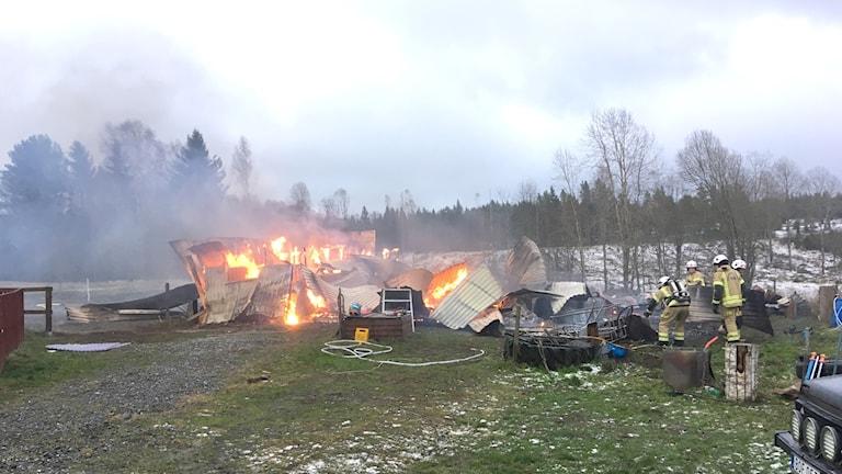Stallet i Grums i brand.