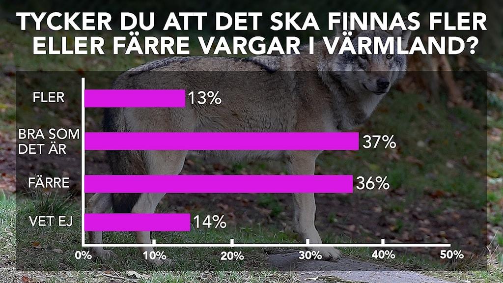 En graf som visar vad drygt 1 000 personer svarat på en fråga. Grafisk bild/Sveriges Radio.