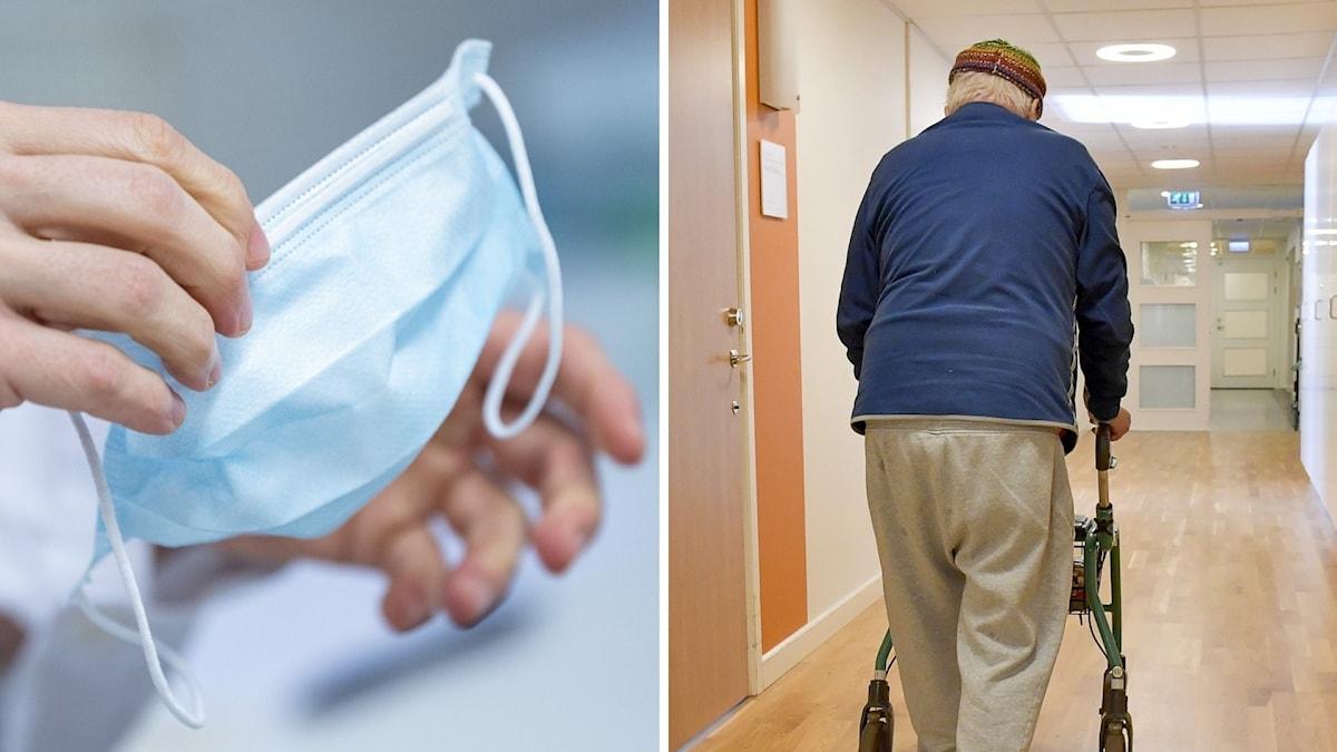 Montage: Händer som håller i munskydd, äldre man går med rullator. Foto: JONAS EKSTRÖMER / TT/ Johan Nilsson/TT