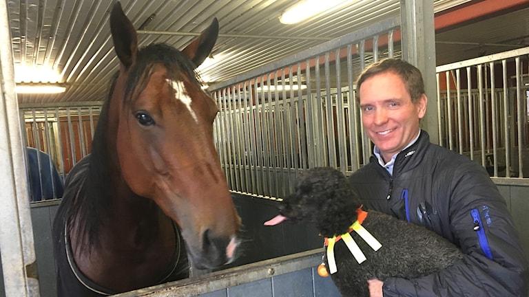 Björn Goop tillsammans med hästen Glenn Boko och hunden Jorma. Foto: Gustav Jacobson/Sveriges Radio.