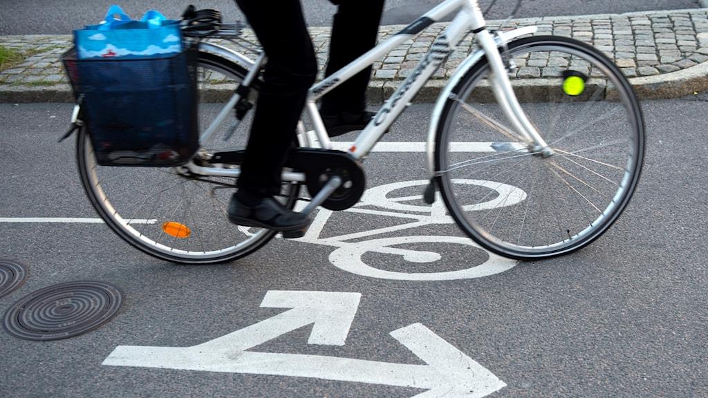 En cyklist på en cykelbana. Foto: Fredrik Sandberg/TT.