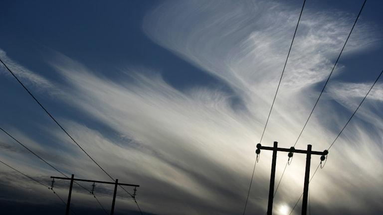 Elledningar mot en blå himmel. Foto:  Fredrik Sandberg/TT.